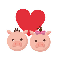 cute couple pigs love heart vector image