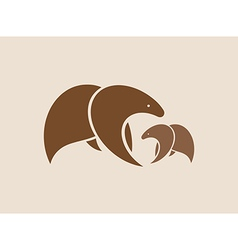 images two brown bears vector image