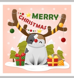 Merry Christmas Greeting Card with cat wearing vector