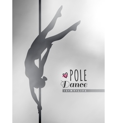 pole dance vector image