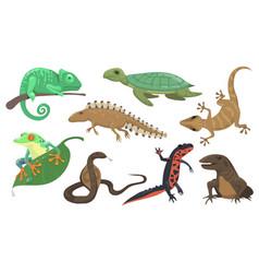 Reptiles and amphibians set vector