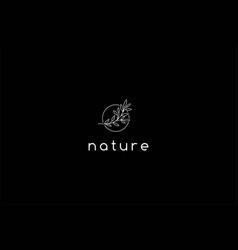 simple minimalist elegant nature leaf line for vector image