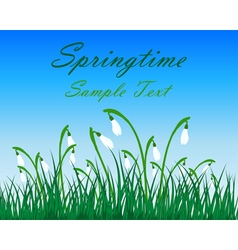 Springtime Meadow vector image