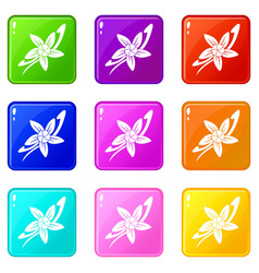 Vanilla sticks with a flower icons 9 set vector