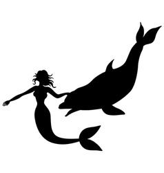 mermaid swimming dolphin vector image vector image