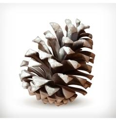 Pine cone icon vector image
