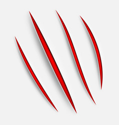 animal claw scratches vector image