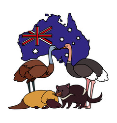 Animals australia with map australia in the vector