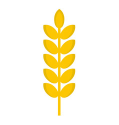 Grain spike icon isolated vector