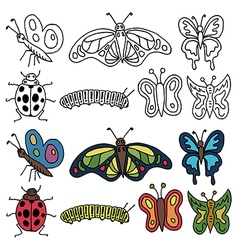Hand drawn insects vector