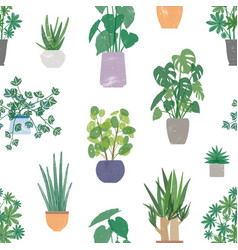 home plants in ceramic pots seamless vector image