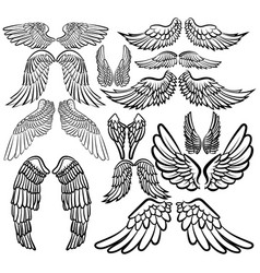 Set angel wings wings collection with feathers vector