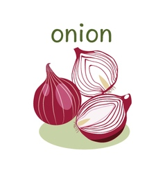 Red Onion Isolated object in flat style vector image vector image