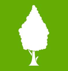 cypress icon green vector image