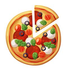 Pizza top view cartoon vector