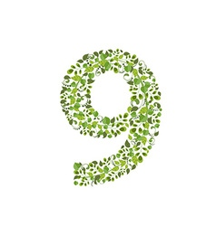 Spring green leaves eco number 9 vector image