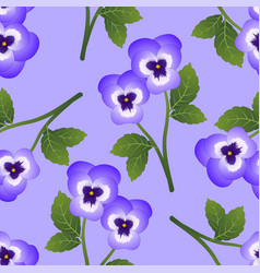 violet pansy flower on light purple background vector image