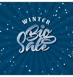 Big Sale winter insignia and labels for any use vector image