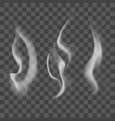 realistic steam or smoke texture set vector image
