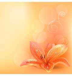 pastel background with orange lily vector image