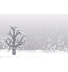 Winter tree grunge background vector image
