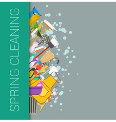 Spring cleaning vector image vector image