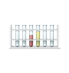 test tube stand vector image