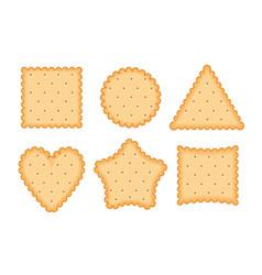 biscuit cookie cartoon vector image