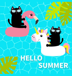 black cat floating on white flamingo unicorn pool vector image