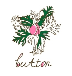 Hand drawn bud anemone Vintage vector