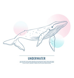 Huge whale with contrast circles doodle art vector