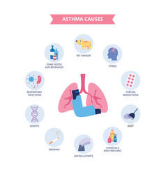Infographics bronchial asthma causes flat vector