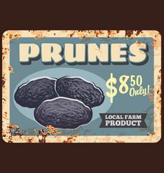 Prunes dried plums fruits rusty metal plate food vector