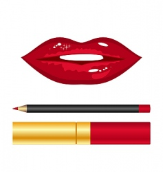 red lips and lipstick vector image
