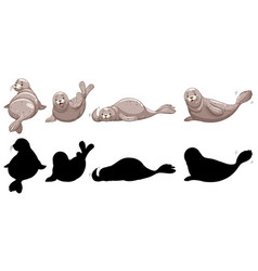 Set seal characters and its silhouette on vector