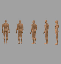 set with a polygonal body of a man rear view vector image