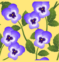 Violet pansy flower on yellow background vector