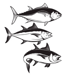 Set of tuna fish icons isolated on white vector