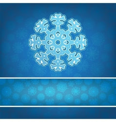 Christmas snowflake applique background EPS8 vector image