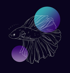beautiful gold fish underwater line art marine vector image