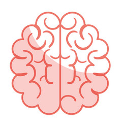 Brain halves flat vector