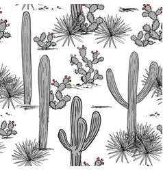 Hand drawn set with saguaro blue agave vector
