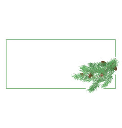 horizontal background with pine branch vector image