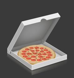 pizza in box vector image