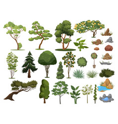 Set trees and shrubs collection landscape vector