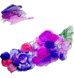 watercolor fruits and beverage set vector image vector image