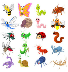 Set of Funny Insects Cartoon Character Flat Design vector image