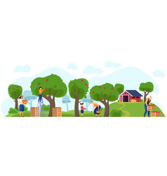 Family working in apple orchard together farm vector