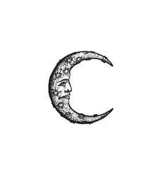 Hand drawn moon vector