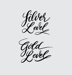 Silver and gold level handwriting calligraphy vector